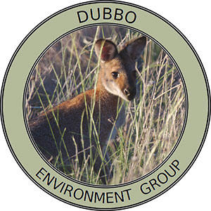 Dubbo Environment Group Logo - Bathurst Community Climate Action Network (BCCAN)