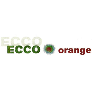 ECCO Orange Logo - Bathurst Community Climate Action Network (BCCAN)